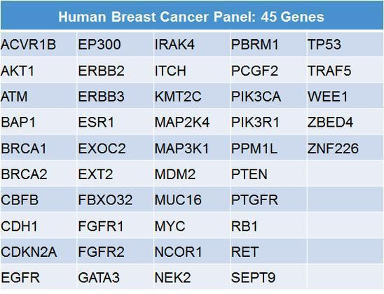 Cancer Panels Gene List